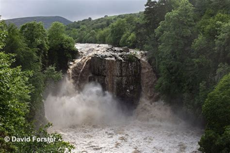high force waterfall on the river tees photo walking britain bluestone images photography by david forster 05d 1687
