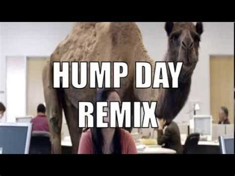 geico camel commercial hump day the gallery for gt hump day camel geico