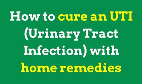 how to cure an uti urinary tract infection with home