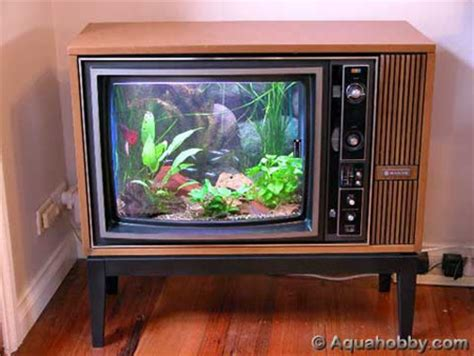 15 and creative aquariums
