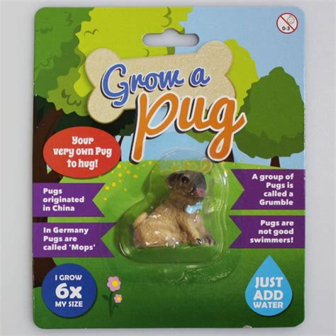 pug merchandise nz grow a pug gifts 15 and gifts