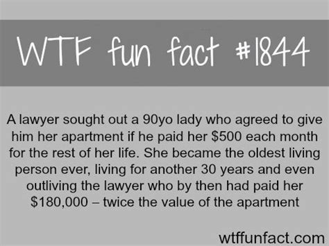 bad luck lawyer facts facts for boring days pintere