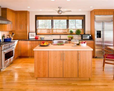 modern kitchen cabinet colors modern kitchen cabinet colors houzz