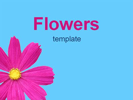 powerpoint flower templates flowers 2