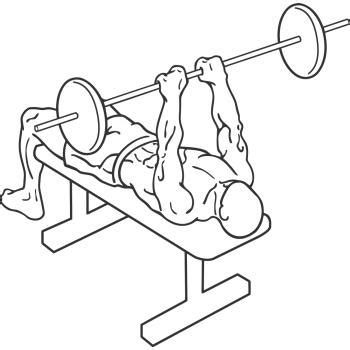 narrow bench press narrow grip bench press gymwolf