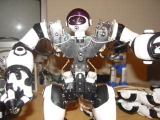 A Day In The Of Robosapien by The Techman Tech Projects My Robosapiens Robot
