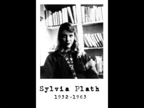themes in black rook in rainy weather sylvia plath reads quot black rook in rainy weather quot youtube