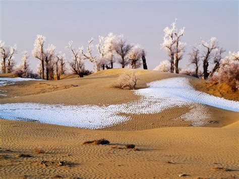 snowfall in desert snow in iraq iraqpictures org