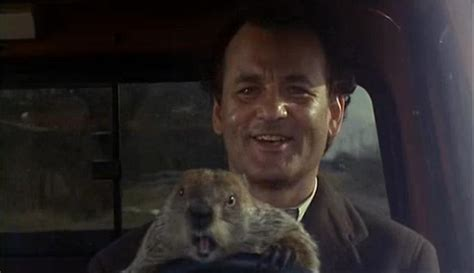 groundhog day you never thank me quotes by george murray like success