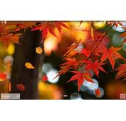 Autumn Wallpaper  QyGjxZ