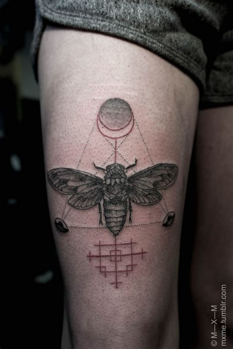 cicada tattoo best 25 cicada ideas on
