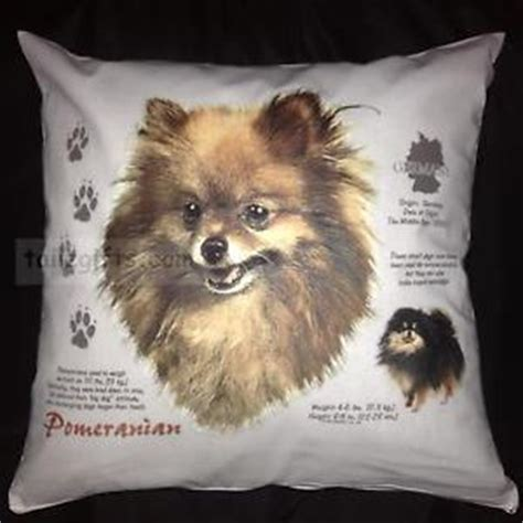 pomeranian breed history pomeranian history breed of cotton cushion cover gift