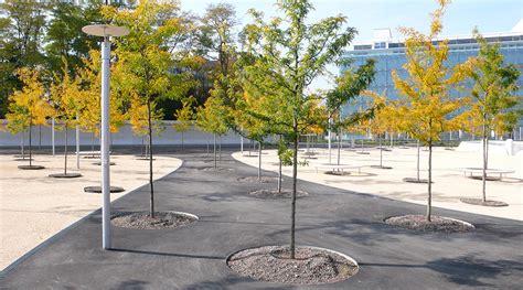 Landscape Architecture Zurich Open Space Leutschenbach Z 252 Rich Westpol Landscape
