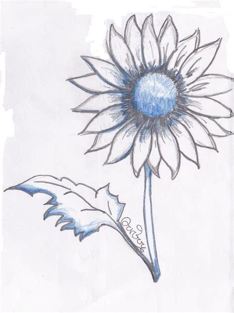 fiori disegnati a matita i fiori visti in arte e attraverso la tecnica disegno