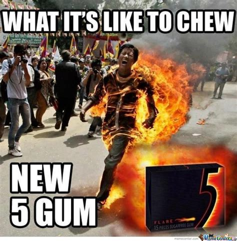 5 Gum Meme - new 5 gum by shadowgun meme center