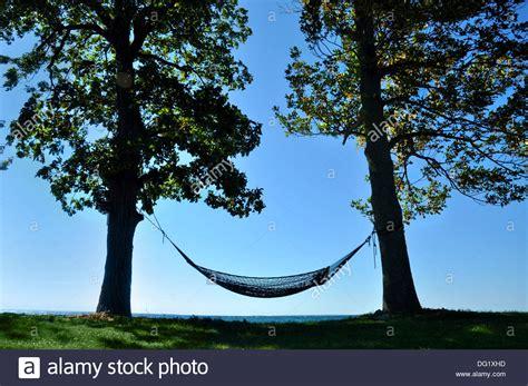 Hammock Between Two Trees hammock between two trees on shoreline of lake ontario new york stock photo royalty free image