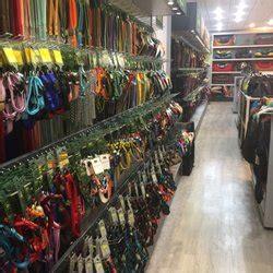 puppy store fort lauderdale pet store pet shops 2414 e blvd fort lauderdale fl united states