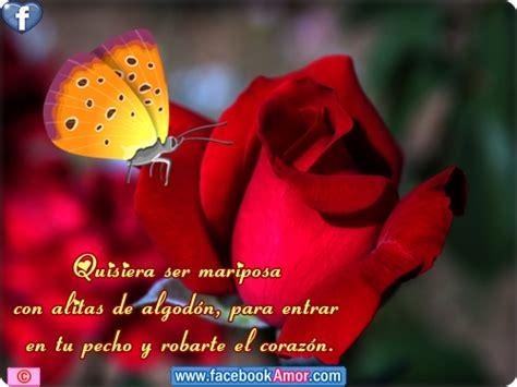 20 im 225 genes de rosas rojas hermosas para descargar gratis imgenes de rosas con frases para novias im 225 genes de