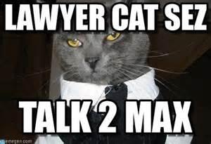 Lawyer Cat Meme - lawyer cat meme www imgkid com the image kid has it