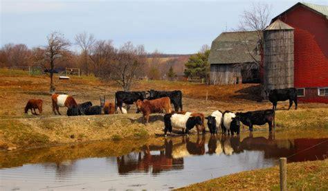 New Farmhouse Plans american farm photograph by cindy haggerty