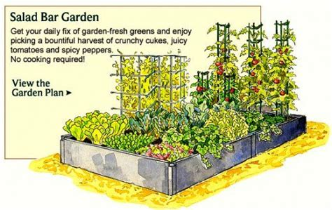 Vegetable Garden Layout Diagram Vegetable Free Engine Small Vegetable Garden Layout