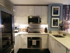 Houzz Modern Kitchen Cabinets My Houzz Bachelor S Nyc Pad Contemporary Kitchen New York By Frances Bailey