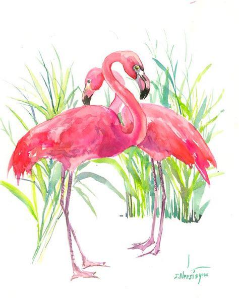 Flaminggo Top Ori Chi 1451 best watercolor birds images on