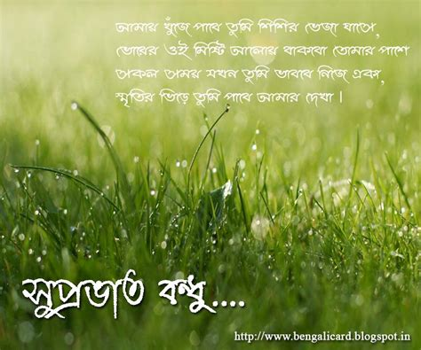 bengali good morning sms good morning wishes in bengali pictures images