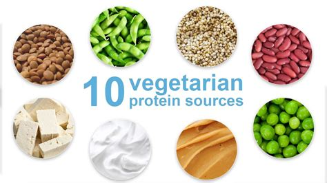 protein for top 10 vegetarian protein sources