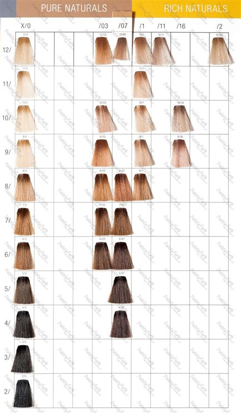 wella colors best 25 wella hair color chart ideas on color