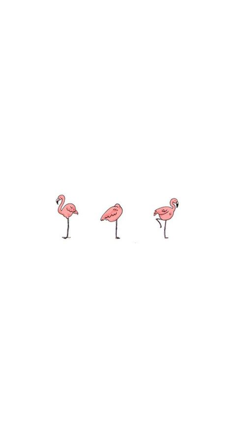 flamingo wallpaper for iphone 6 908 best images about iphone backgrounds on pinterest