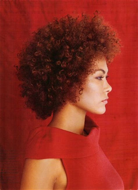 women hairstyle gallery for afros cut close fashion afro curly hairstyle for women