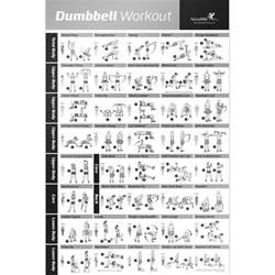at home dumbbell workout dumbbell workout exercise poster strength