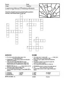 science worksheets grade 6 science worksheets archives e