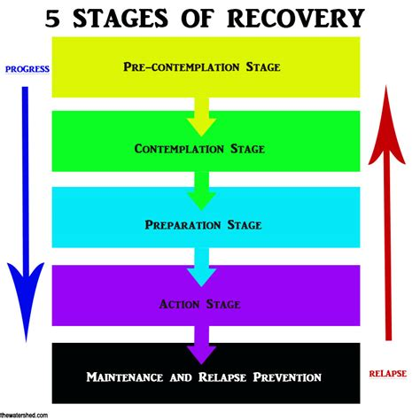 Stages Of Detox by The 5 Stages Of Recovery From Addiction Chemical Health