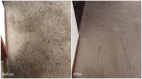 boat carpet denver carpet cleaning denver carpet cleaners service denver
