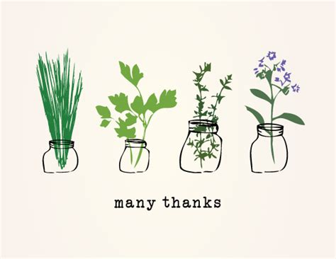 Thank You Letter Design thank you cards thank you herbs at minted