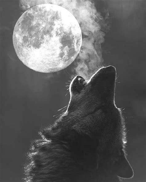 full moon wolf moon walking my pagan path