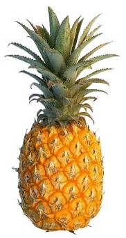what color is a pineapple yellow pineapple colors photo 34691588 fanpop