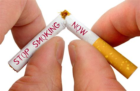 the link between smoking and mouth cancer malmin