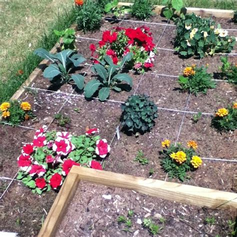 Square Foot Gardening Flowers Pin By Watters Health Coach On Gardening Goddess