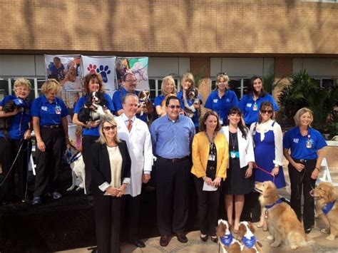 petsmart therapy 37 best pet therapy images on therapy therapy dogs and orlando