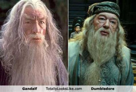 actor gandalf y dumbledore dumbledore and gandalf actors www pixshark images