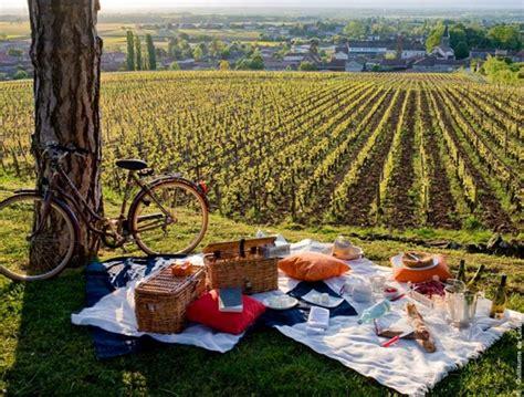 pique nique gastronomique dans les vignes voyages sncfcom
