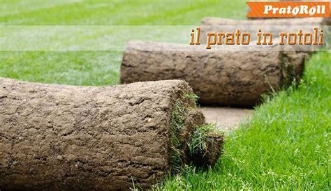 tappeto erboso a rotoli listino prezzi prato di ottima qualita in rotoli o zolle