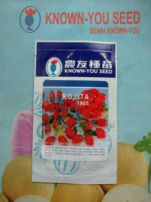 Bibit Tomat bibit benih bibit benih tomat cherry lonjong rojita dadi makmur