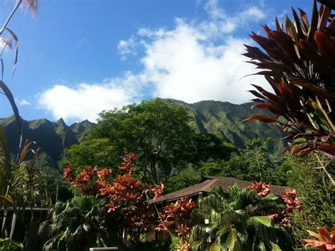 Ho Omaluhia Botanical Garden by 7 Best Ideas About Oahu On Parks Snorkeling And Shore