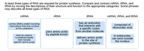 3 proteins and their functions solved at least three types of rna are required for prote