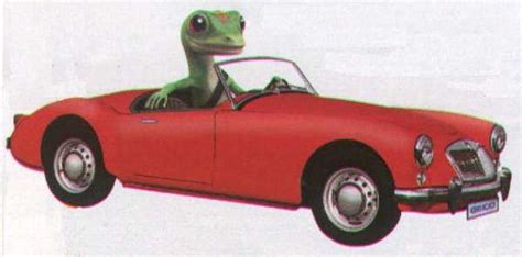 Geico Gift Card - literature for the mga advertising