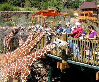 Inexpensive Hostess Gifts by The Top Ten Zoos According To Tripadvisor Enter To Win 2